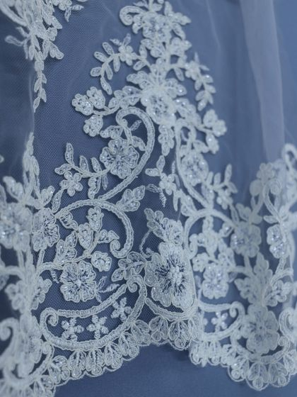Sequinned Embroidery Lace-45cm/18
